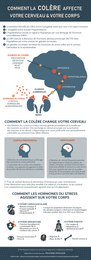 infographie-colere-mini
