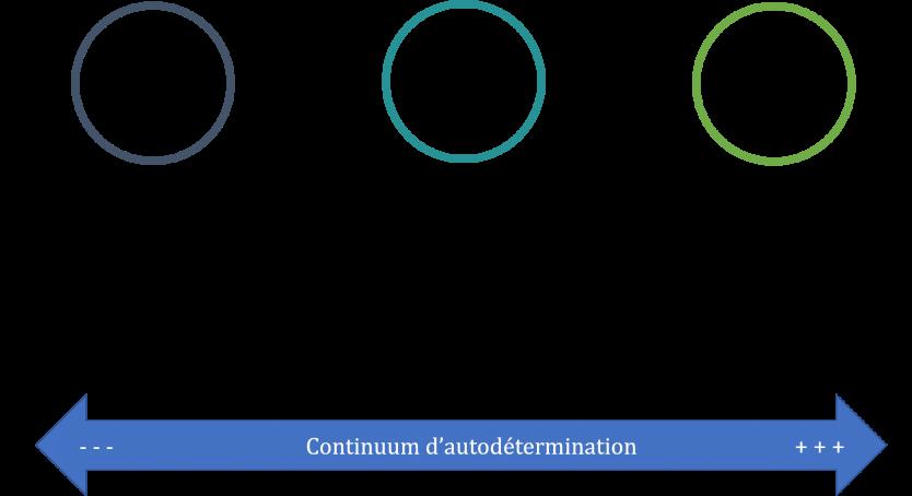 Autodetermination