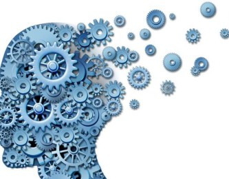 brain-logical-levels