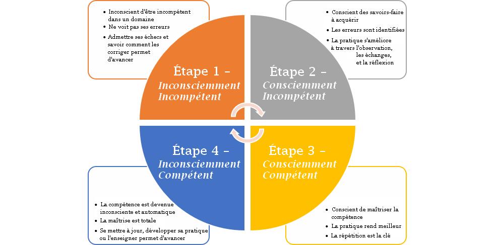 4-niveaux-de-compétence
