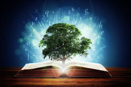 connaissances-et-apprentissages