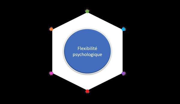 Flexibilite-psychologique-schema